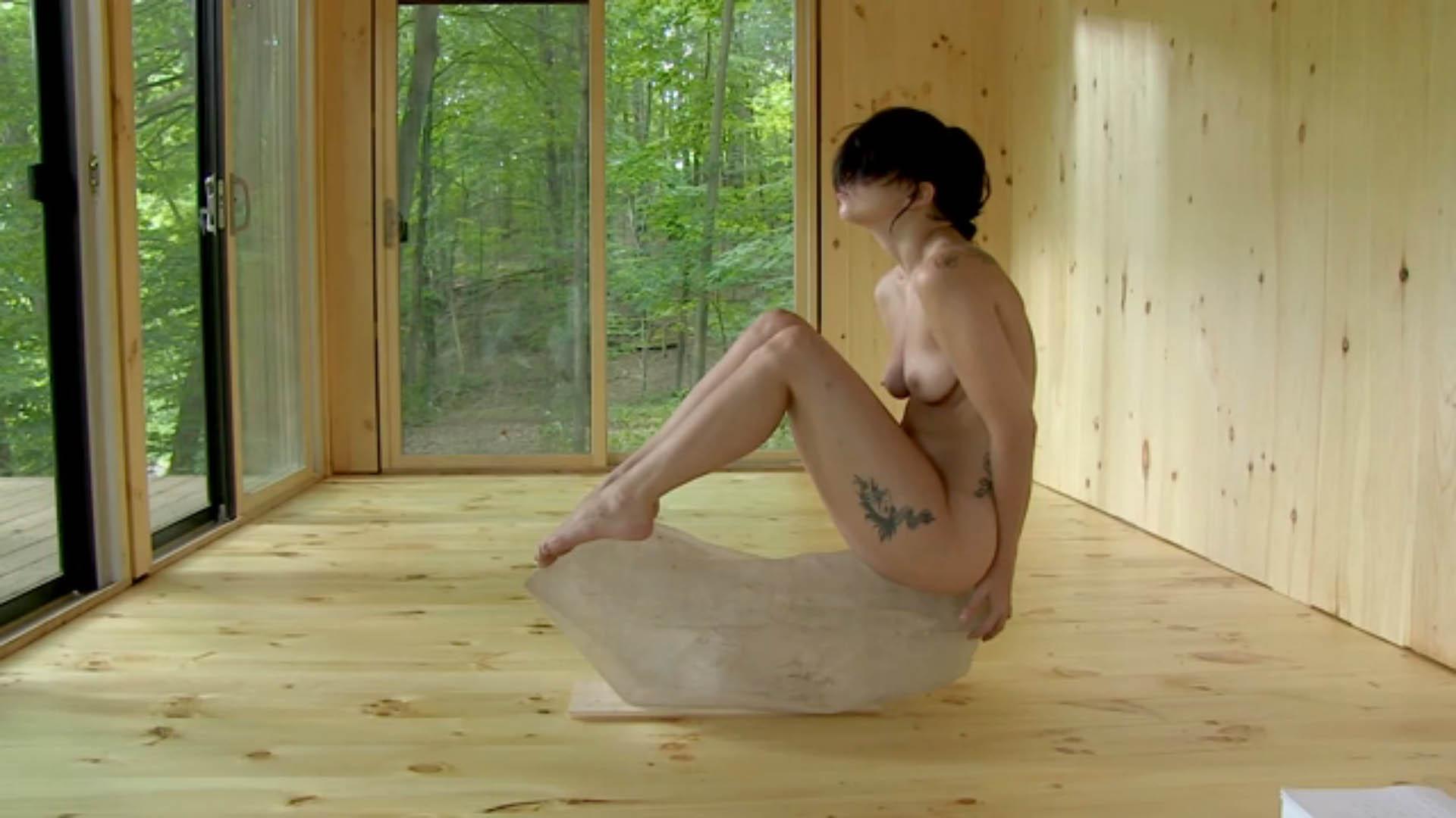 Lady Gaga – Nackt für einen guten Zweck