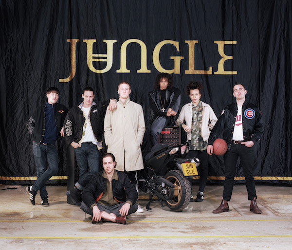 Jungle (Credit Dan Wilton)