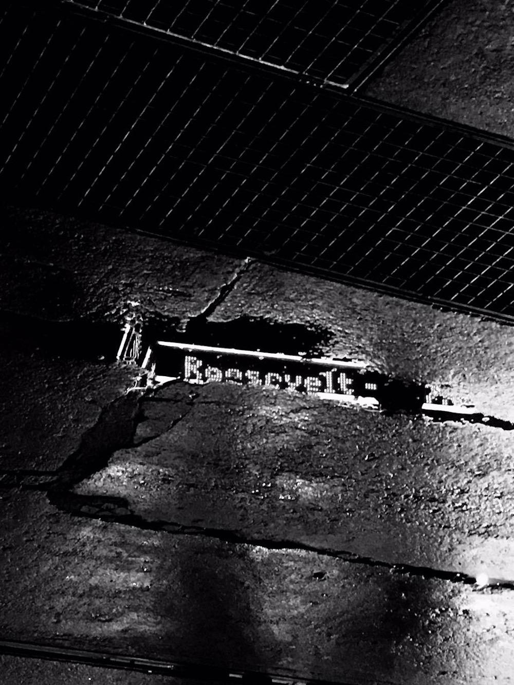 Roosevelt (Credit Katharina Ketzler)