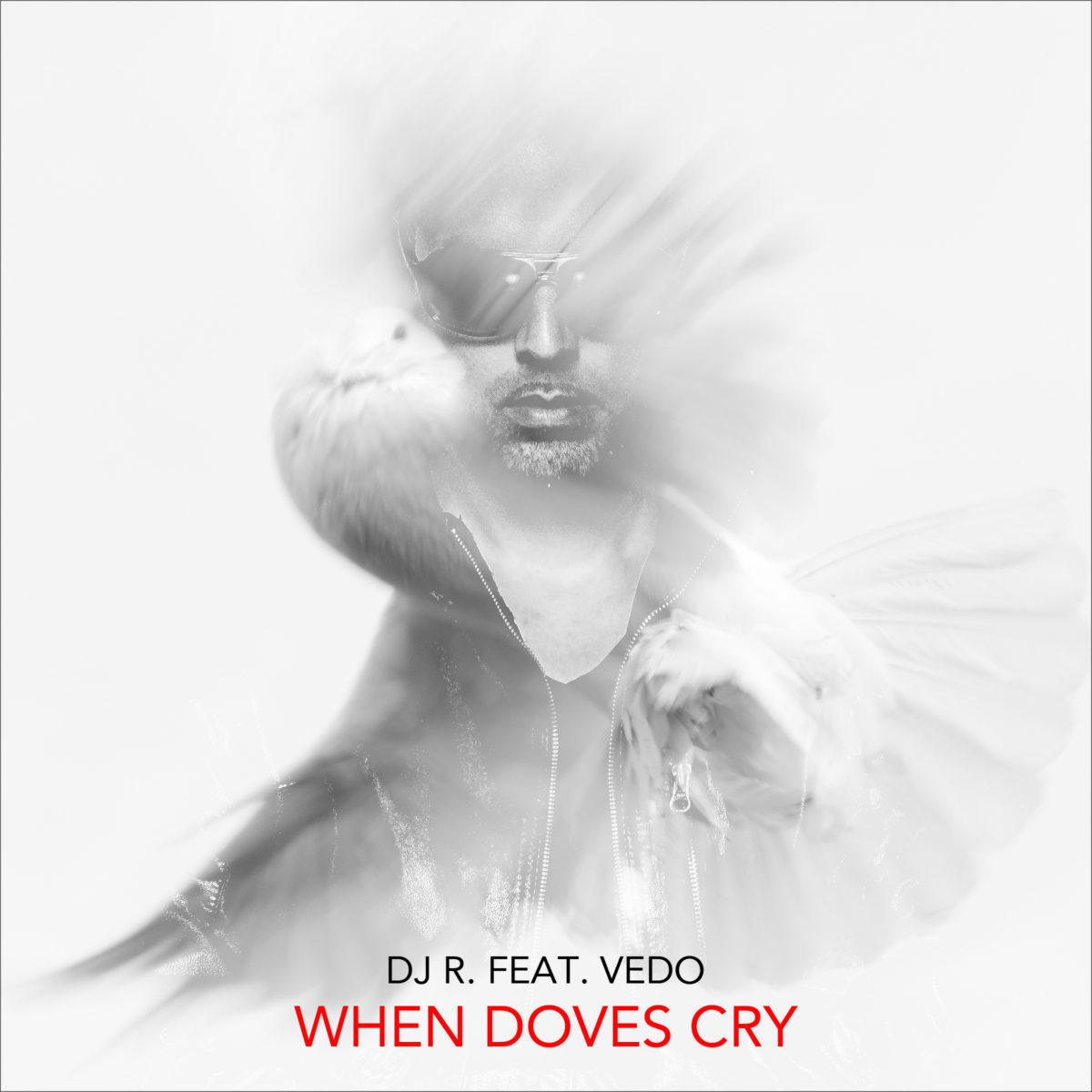 DJ R. feat. Vedo - When Doves Cry
