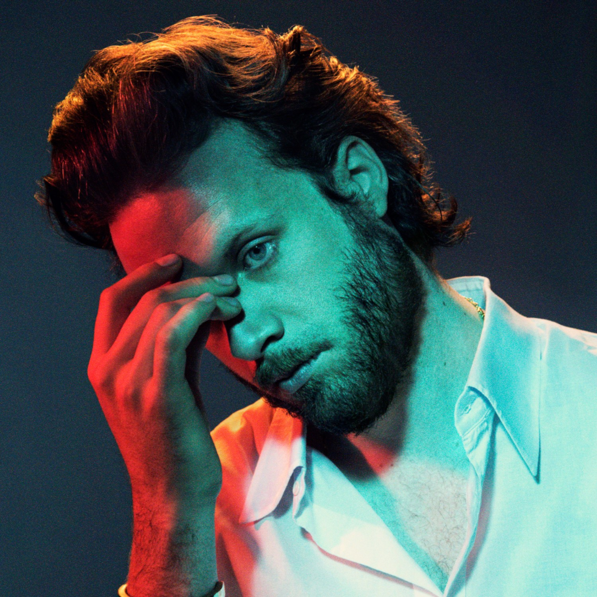 Father John Misty (Credit Pari Dukovic)