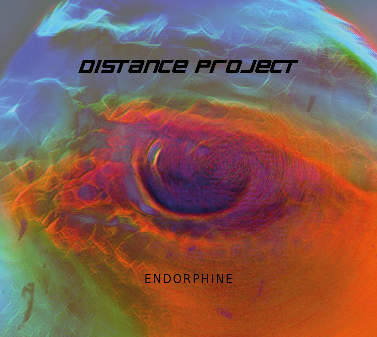 DISTANCE PROJECT – Endorphine